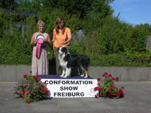 Conformation Show in Freiburg an der Elbe 16.07.06 2. Platz German Bred